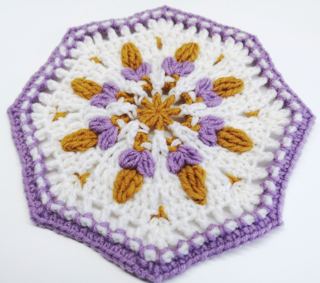 Read more about the article Crochet Octagon Pattern #1